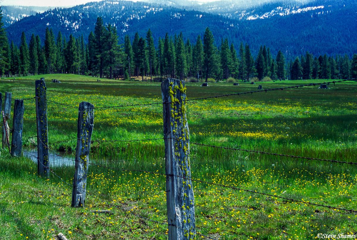 sierraville california, photo