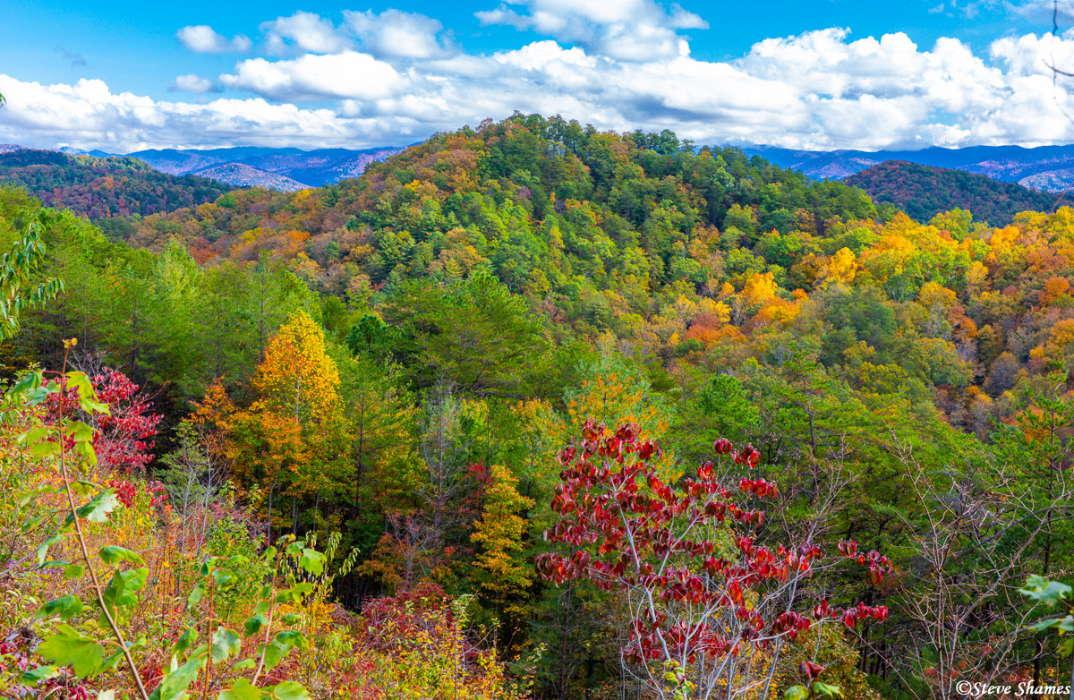 A particularly colorful spot in the Smokey Mountains.
