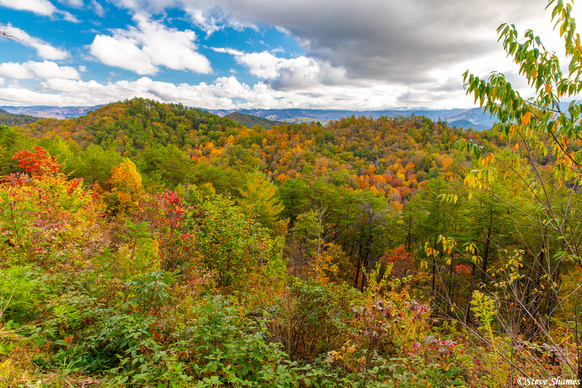 Peak fall colors at certain spots were very stunning. This was late October and some higher elevations were past peak, but much...