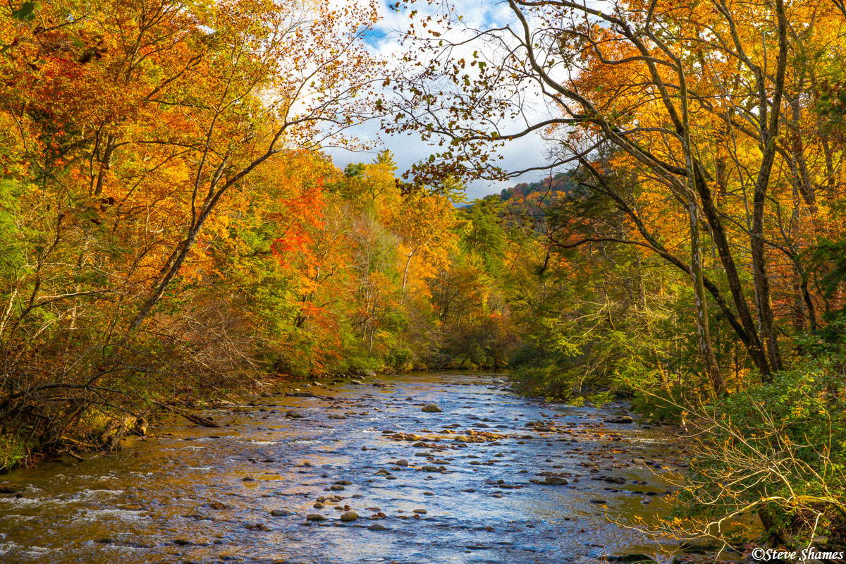 With the fall colors lining a river, it becomes a very beautiful scene.