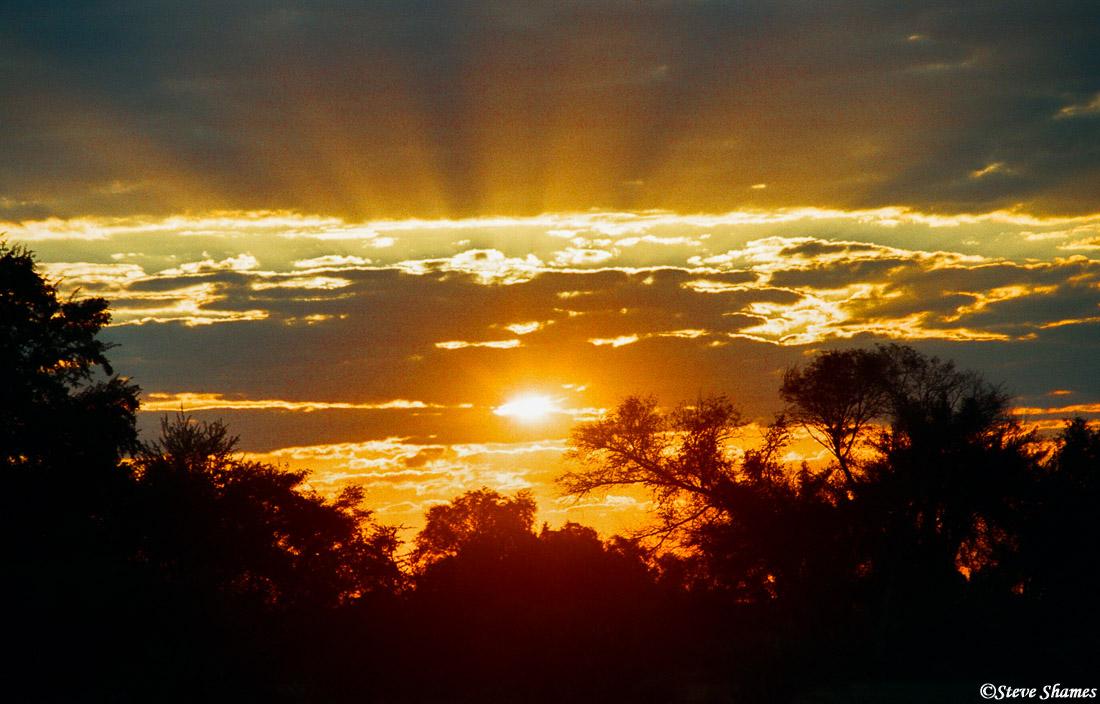 moremi sunset, game reserve, botswana, photo