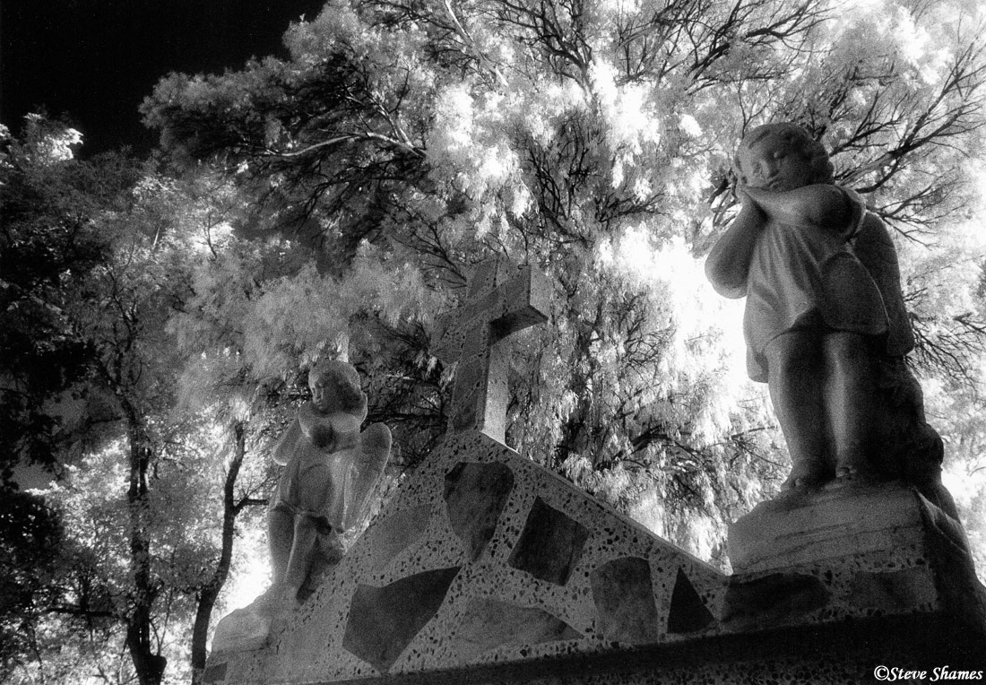 morelia, mexico, cemetery, angels, photo