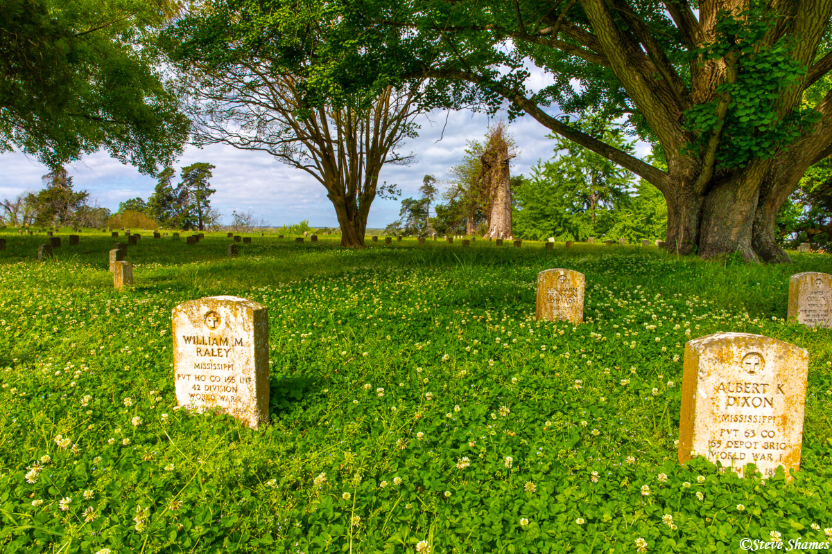 This shady field of clover at Vicksburg National Cemetery looked like a pleasant enough spot to spend eternity.
