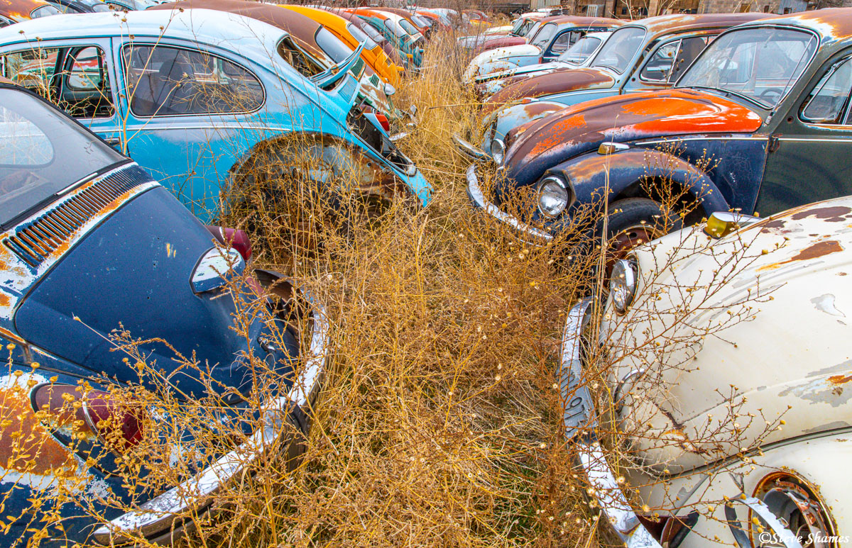 Volkswagen junkyard in Moab Utah. I was amazed by all the colors these little cars came in.