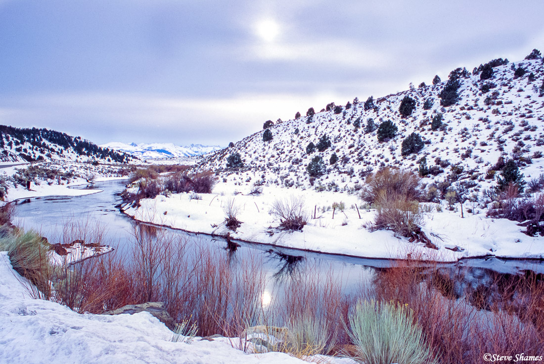 walker river, nevada, bridgeport, photo