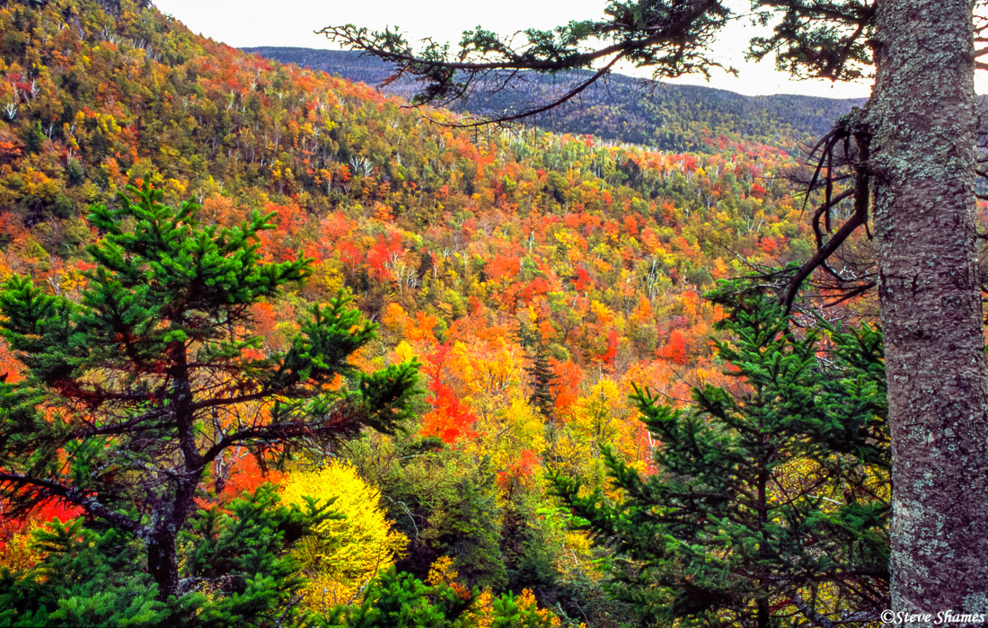 white mountains, new hampshire, colorful scene, photo