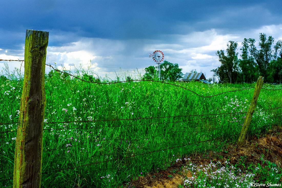 farm structures, windmill, farmhouse, sacramento county, california, photo