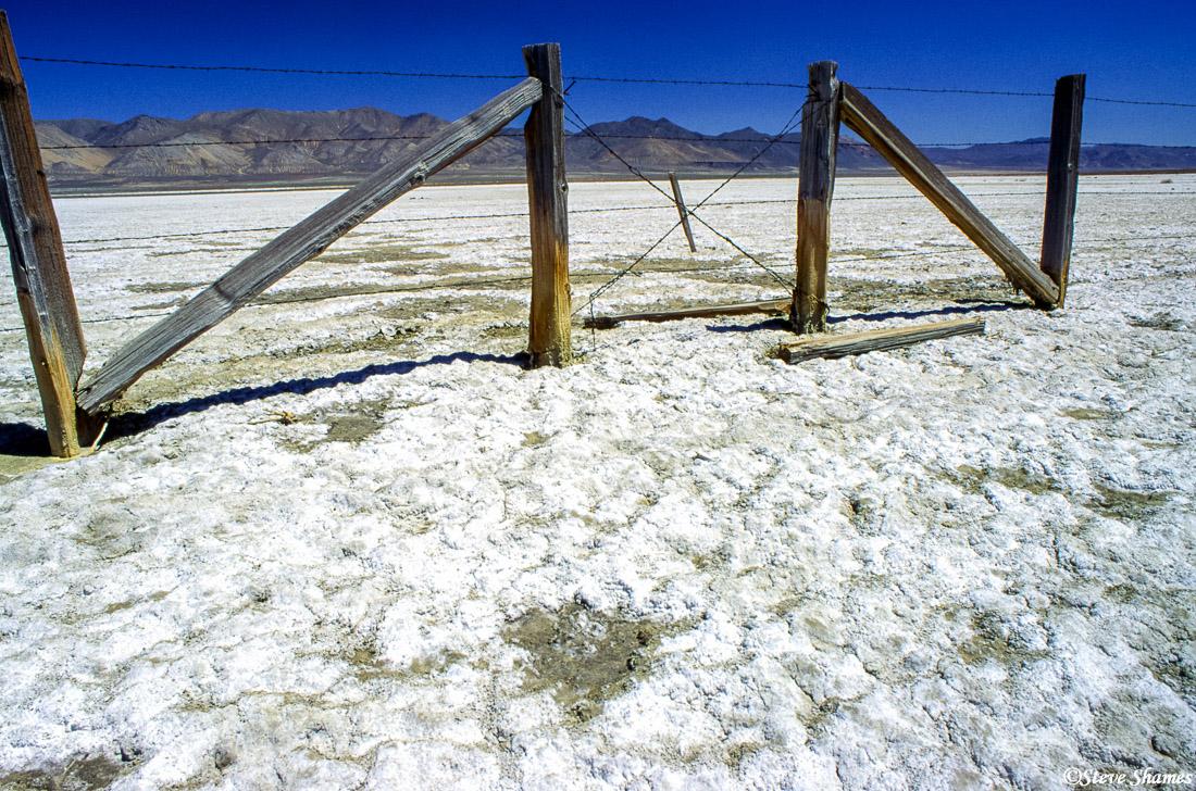 winnemucca lake, nevada, alkaline lake, great basin, photo