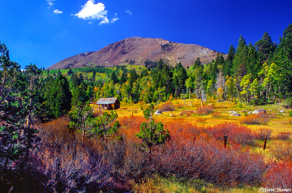 woodfords california, fall colors, carson pass highway, photo