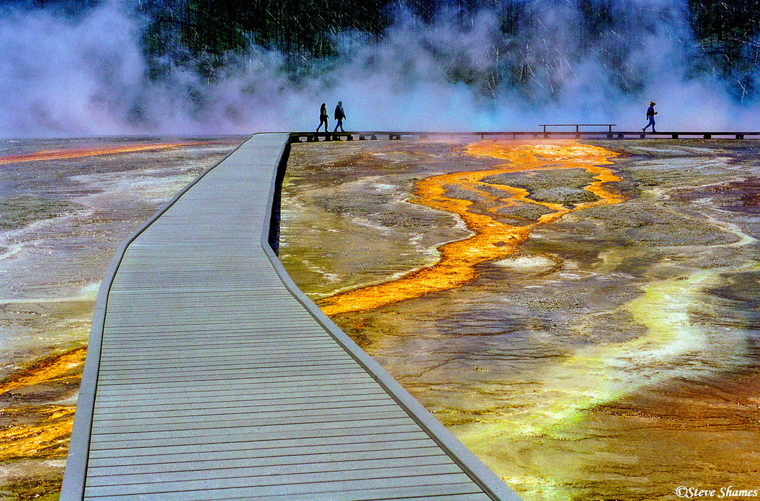 yellowstone boardwalk, national park, wyoming, steaming waters, photo