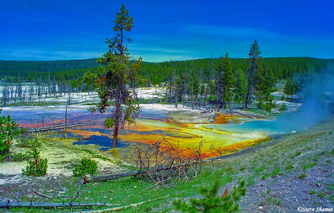 yellowstone color, national park, wyoming, photo