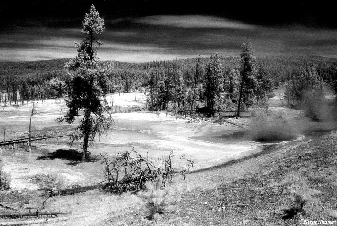 yellowstone, national park, wyoming, infrared, photo