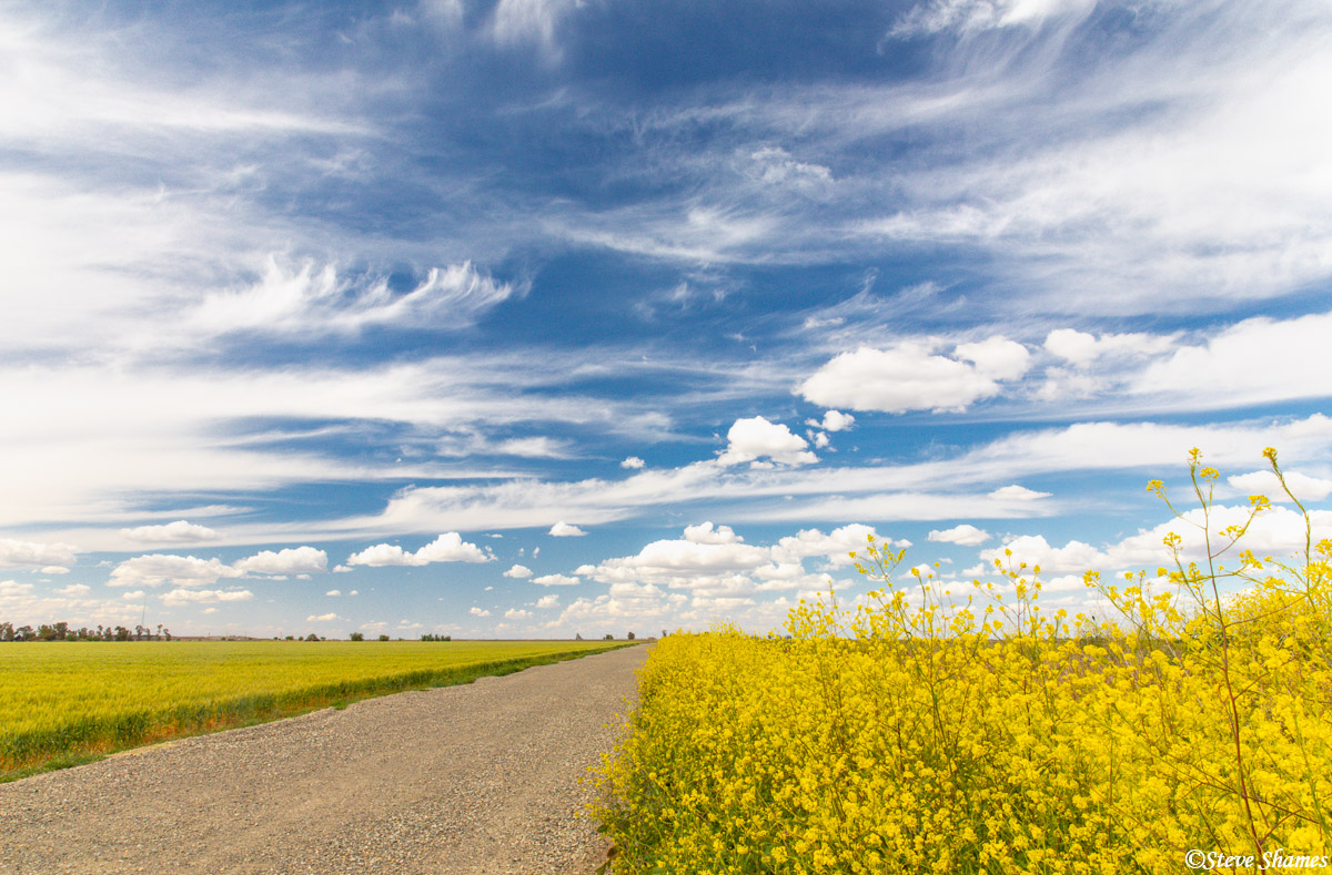 """I call this a """"big sky"""". With the color on the ground, and the great skies, springtime is by far my favorite time in this area..."""